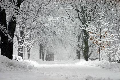 Canada Climate 1636
