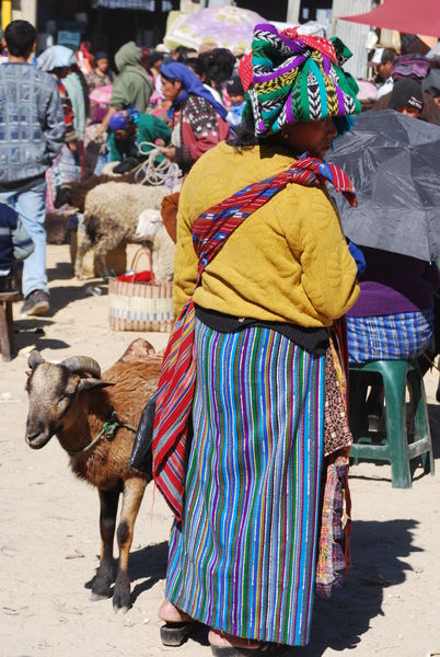 Guatemala Poverty And Wealth 1393