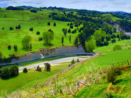 Environment - New Zealand - problem, average, issues, farming